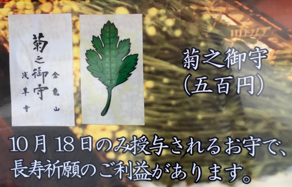 IMG_6207 (1)