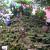 年に2日しか登れない歴史ある富士塚が今解放中「小野照崎神社」の「お山開き」