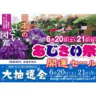 長國寺で「あじさい祭」今日から開催!