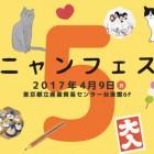 ねこ雑貨大集合! 人気イベント「ニャンフェス5」4月9日(日) 産業貿易センターで開催!